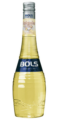 Bols Holunderblüten / Elderflower 17% Vol. 70 cl
