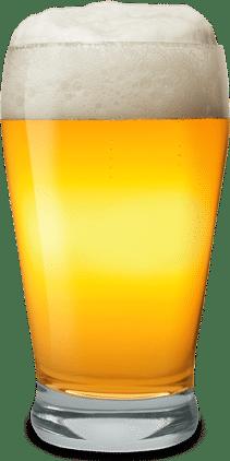 Ritzenhof Craft Beer Gläser 4 Stück mit je 42 cl